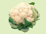 Indian Cauliflower Chutney